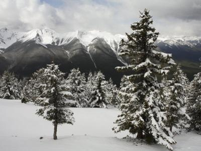 The Rocky Mountains are Seen from Sulphur Mountain