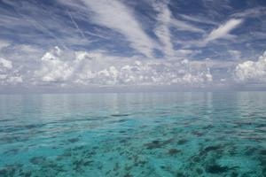 Calm Ocean Water in the Bahamas by Stephen Frink