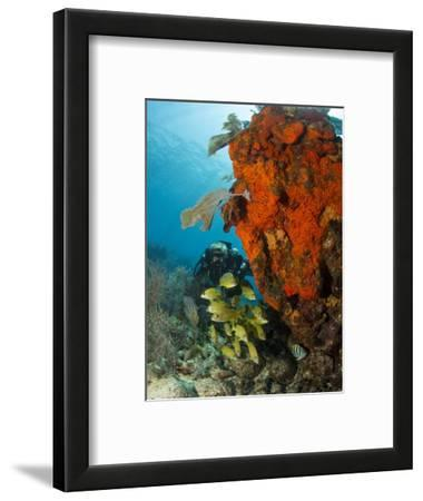 Technical Diver on Coral Reef.