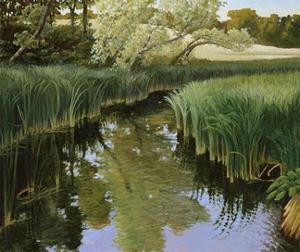 Cattail Creek by Stephen Henning