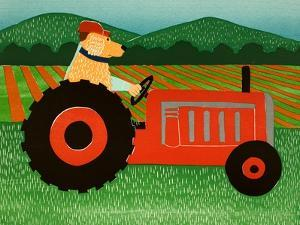 The Tractor by Stephen Huneck