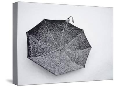 """A Black Umbrella Fills with White Snow During the """"Blizzard of 2010"""""""