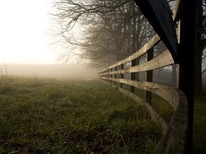 A Fence Disappears into Morning Fog in West Virginia Horse Country by Stephen St. John