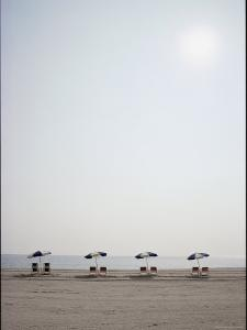 A Row of Empty Chairs and Umbrellas Await Sun-Worshippers by Stephen St. John