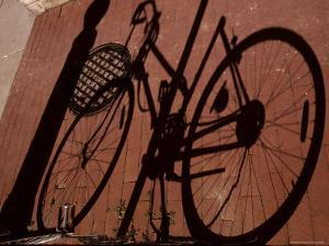 A Shadow Pattern Suggests a Bicycle Lying Across the Brick Walk by Stephen St. John