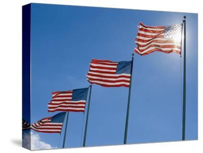 A Stiff Breeze Blows a Row of American Flags on the Battlefield
