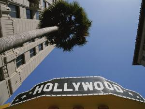 A Tour Bus Sign and a Palm Tree Scream out Hollywood by Stephen St. John