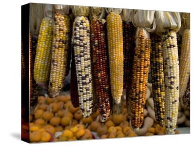 Colorful Indian Corn and Pumpkins Await Halloween