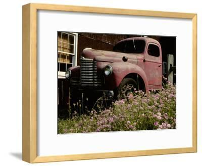 Crown Vetch Flowers, a Barn, and a Vintage Truck Add Local Color