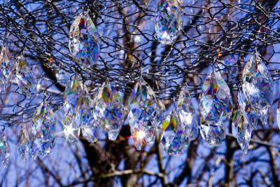 Decorative Crystals Sparkle as Prisms in the Sunlight