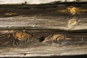 Gnarled Knots and Dried Grain Show the Age of Weathered Barn Wood by Stephen St. John