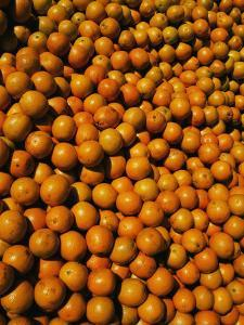 Huge Crates of Sun-Ripened Oranges at a Florida Fruit Stand by Stephen St. John
