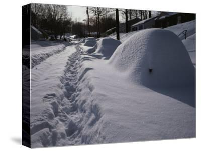 Mounds of Snow Cover Cars on an Unplowed Street after a Bad Storm