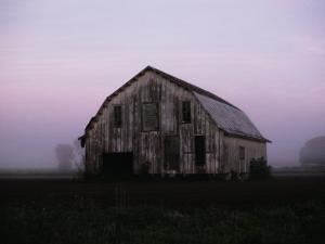 Pink Dawn Mist Around a Weather-Beaten Barn by Stephen St. John