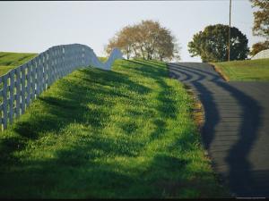 Rolling Hills of Virginia by Stephen St. John