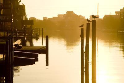 Sunrise Along the Channels Lined with Vacation Houses