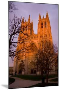 The Last Rays of Sun Warm the Front Towers of the Cathedral by Stephen St. John