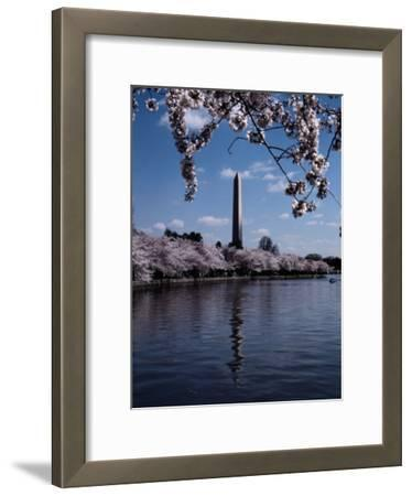 The Washington Monument is Reflected in the Tidal Basin