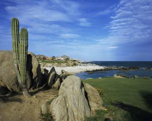 Cabo del Sol Golf Club, Hole 17 by Stephen Szurlej
