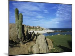 Cabo del Sol Golf Club, Hole 17 by Stephen Szurlej
