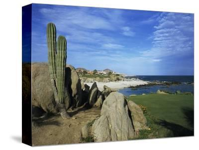 Cabo del Sol Golf Club, Hole 17