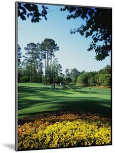 Caledonia Golf and Fish Club, Hole 11 by Stephen Szurlej