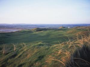 Lahinch Golf Club, grasses and dunes by Stephen Szurlej