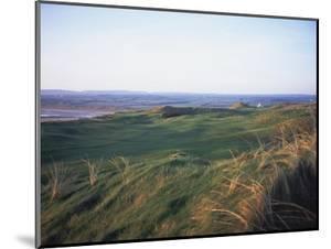 Lahinch Golf Club, grasses and dunes by Stephen Szurlej