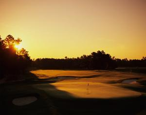 Pinehurst Golf Course No. 2 at sunset by Stephen Szurlej