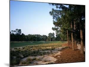 Pinehurst Golf Course No. 2, Hole 12 by Stephen Szurlej