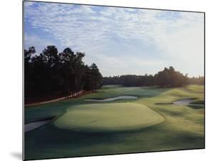 Pinehurst Golf Course No. 2, Hole 18 by Stephen Szurlej