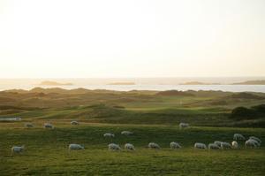 Royal Portrush Golf Club by Stephen Szurlej