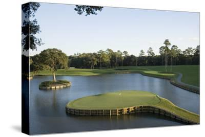 TPC Sawgrass Stadium Course, Island green, Hole 17