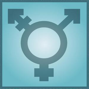 Transgender Symbol, Artwork by Stephen Wood