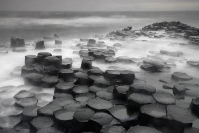 Stepping Stones-Wild Wonders of Europe-Giclee Print