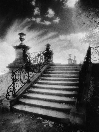 Steps, Chateau Vieux, Saint-Germain-En-Laye, Paris-Simon Marsden-Giclee Print
