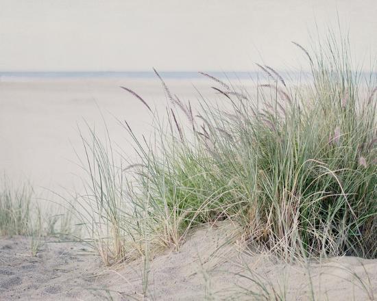Steps To The Beach II-Elizabeth Urquhart-Art Print