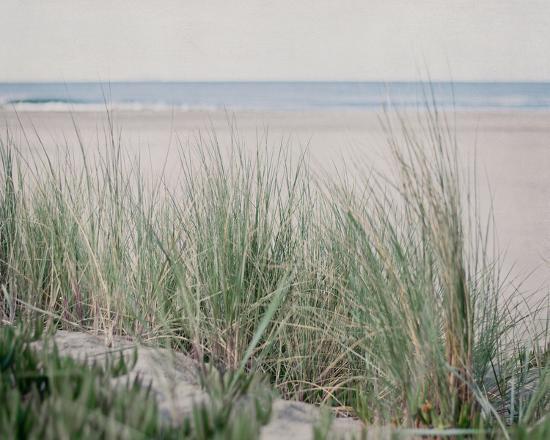 Steps To The Beach IV-Elizabeth Urquhart-Photo