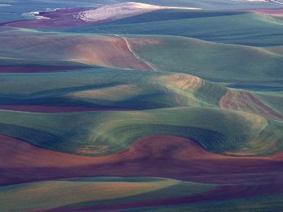 Steptoe Butte State Park, Washington, USA,-Gavriel Jecan-Photographic Print
