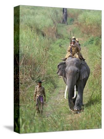 Game Guards Patrolling on Elephant Back, Kaziranga National Park, Assam State, India