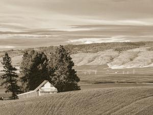 Barn over the Hill by Steve Bisig
