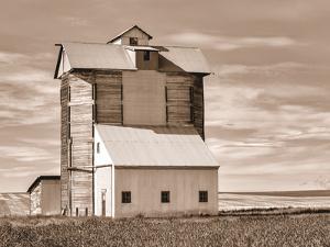 Grain Elevator by Steve Bisig