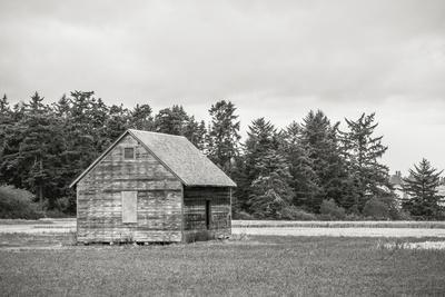 Old Shed, Hill Road Coupeville