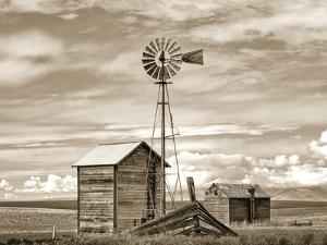 Old Windmill by Steve Bisig