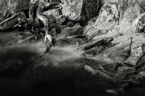 Rocky Coastline, Larrabee State Park by Steve Bisig