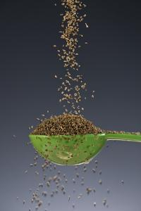 1 Tablespoon Celery Seed by Steve Gadomski