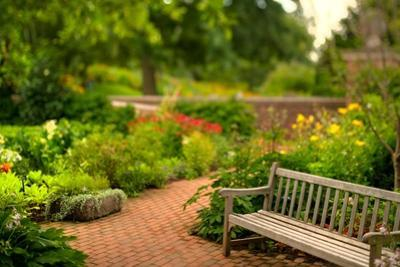 Chicago Botanic Garden Bench
