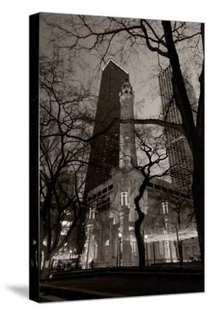 Chicago Water Tower BW