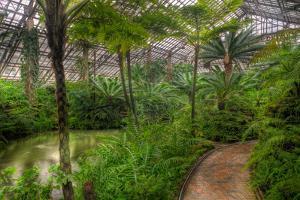 Garfield Park Conservatory Pond And Path Chicago by Steve Gadomski