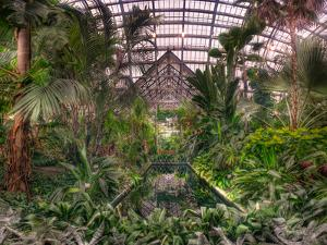 Garfield Park Conservatory Reflecting Pool by Steve Gadomski